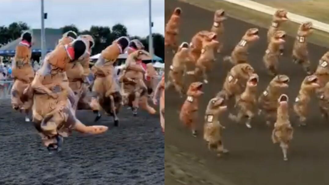 Uwaga, biegną dinozaury! Prehistoryczny wyścig w stanie Waszyngton