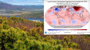 Ogromne odchylenia od normy. Syberia czerwoną plamą na mapie świata
