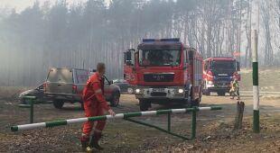 Interwencja strażaków w lesie